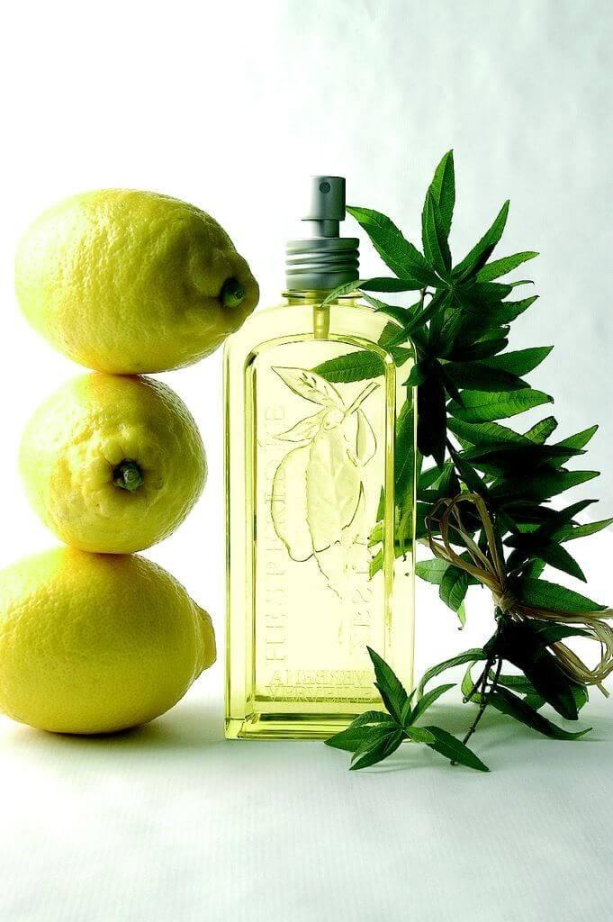 Moodbild Zitronenduft im edlen Flakon neben frischen Zitronen und Zweigen.